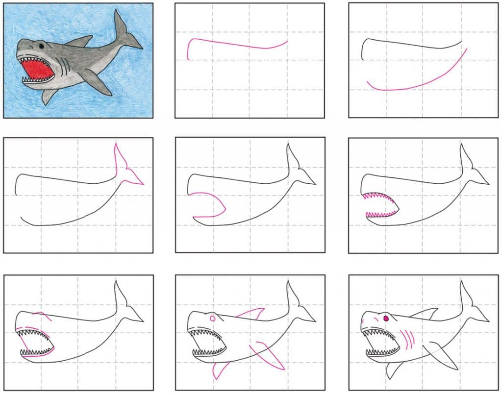 how to draw a megalodon