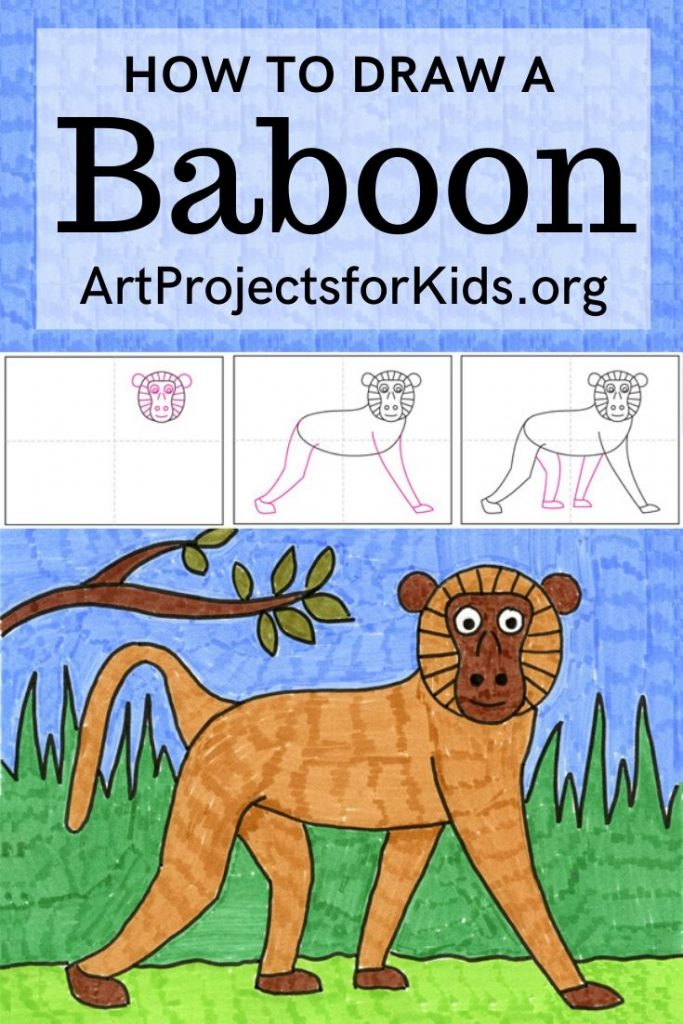 how to draw a baboon