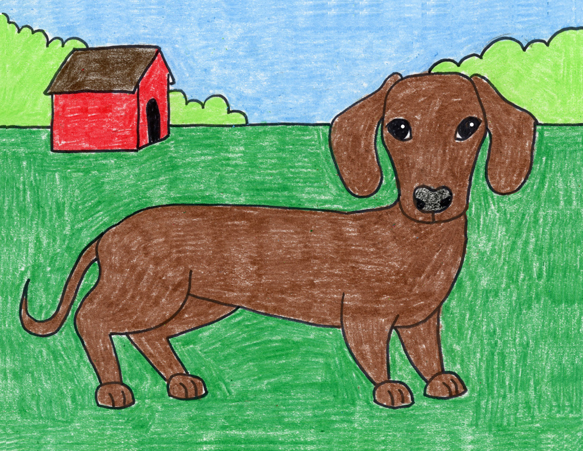 How To Draw A Dachshund Dog Art Projects For Kids