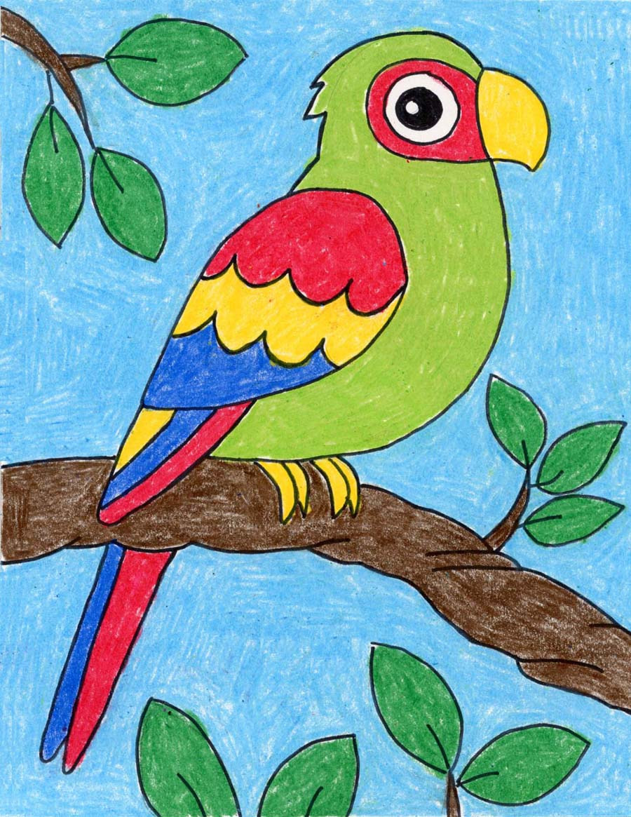 How To Draw A Parrot Art Projects For Kids