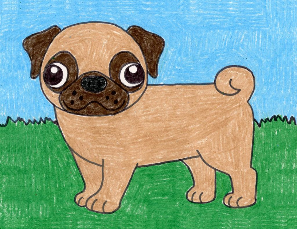 How To Draw A Pug Art Projects For Kids