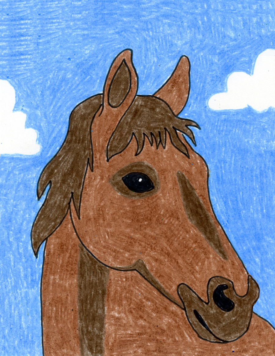 How To Draw A Horse Head Art Projects For Kids