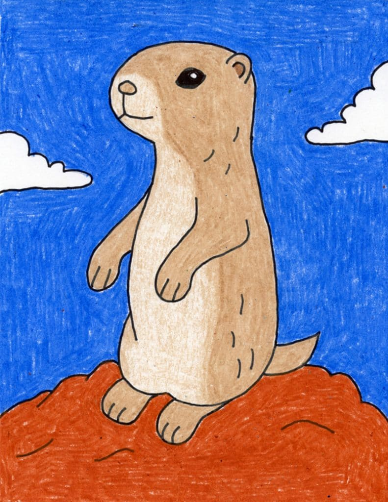 How To Draw A Prairie Dog Art Projects For Kids