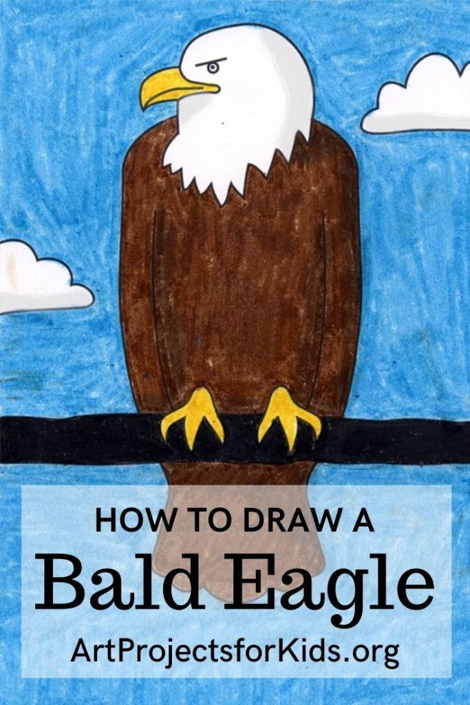 This image has an empty alt attribute; its file name is Bald-Eagle-for-Pinterest-683x1024.jpg