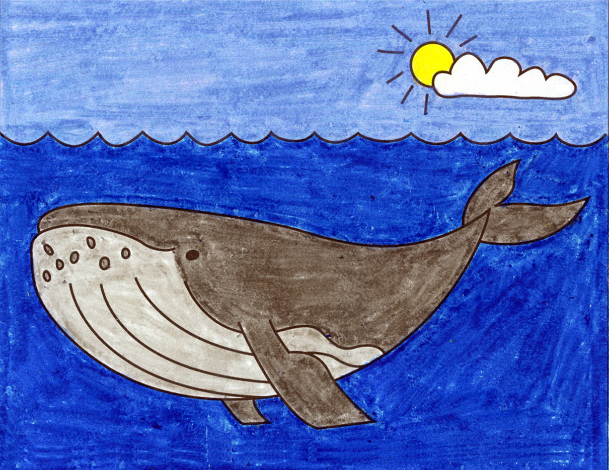 How To Draw A Humpback Whale Art Projects For Kids