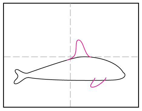 How to Draw a Killer Whale