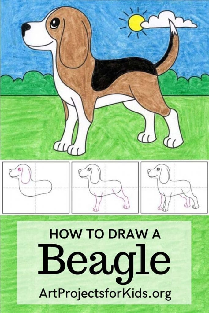 How To Draw A Beagle Art Projects For Kids