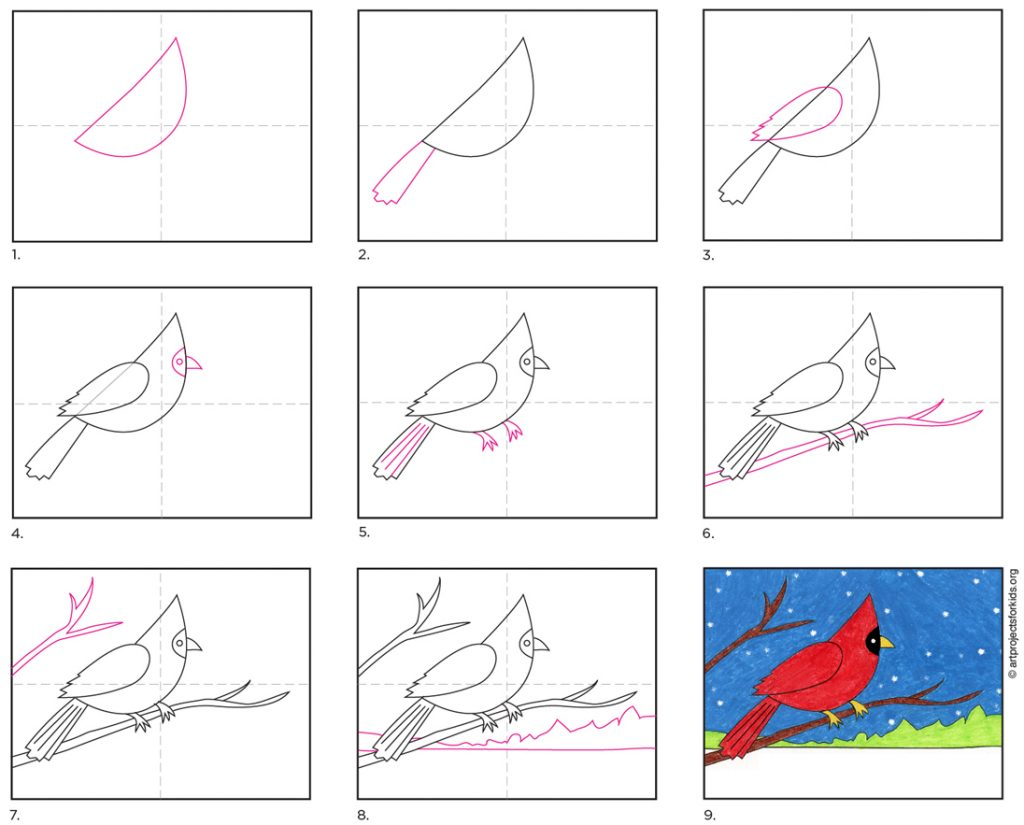 How to Draw a Cardinal · Art Projects for Kids