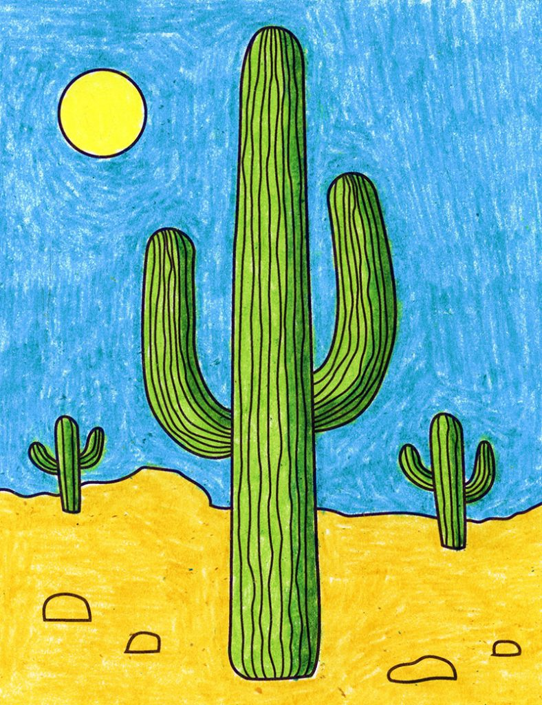 how to draw cactus