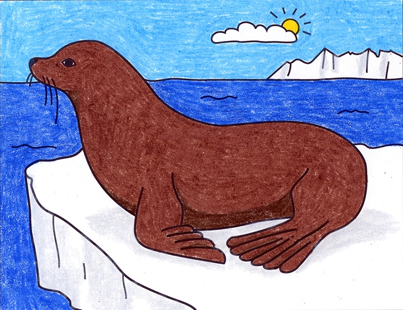 How to Draw a Sea Lion
