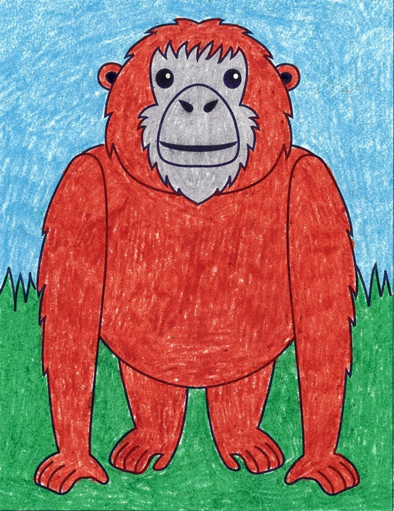 How to Draw an Orangutan