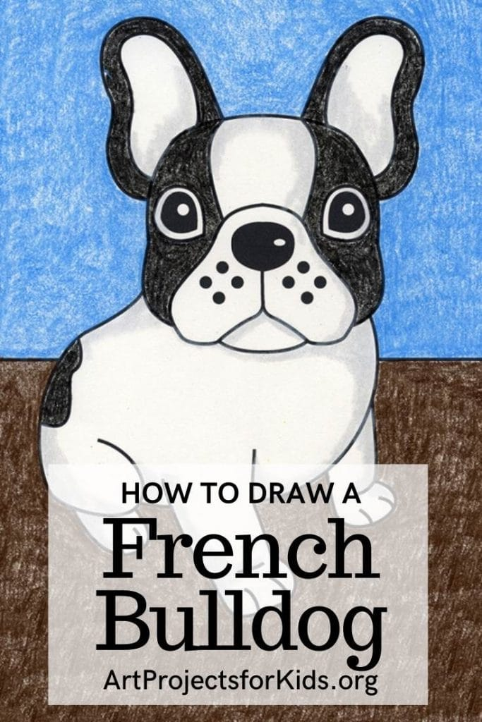 How to Draw a French Bulldog