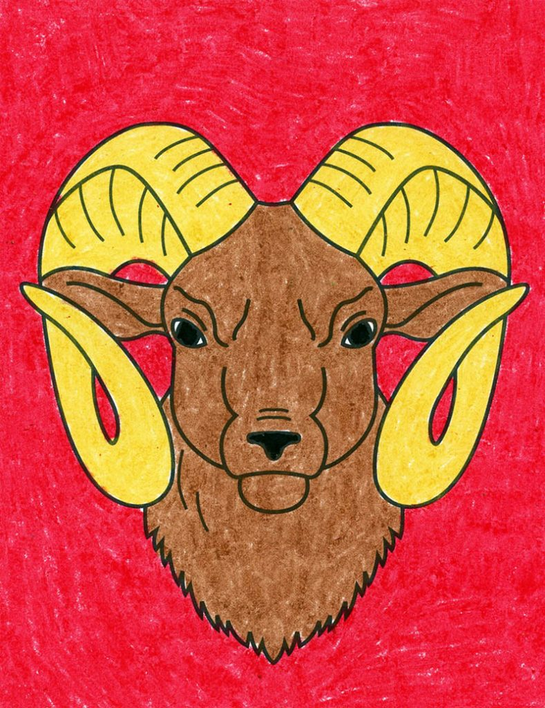 Draw a Ram's Head with the help of a step-by-step tutorial.