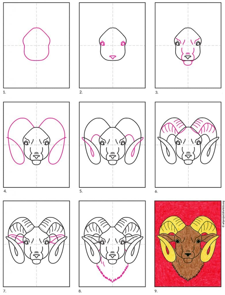 Learn how to draw a ram's head with the help of step-by-step directions.