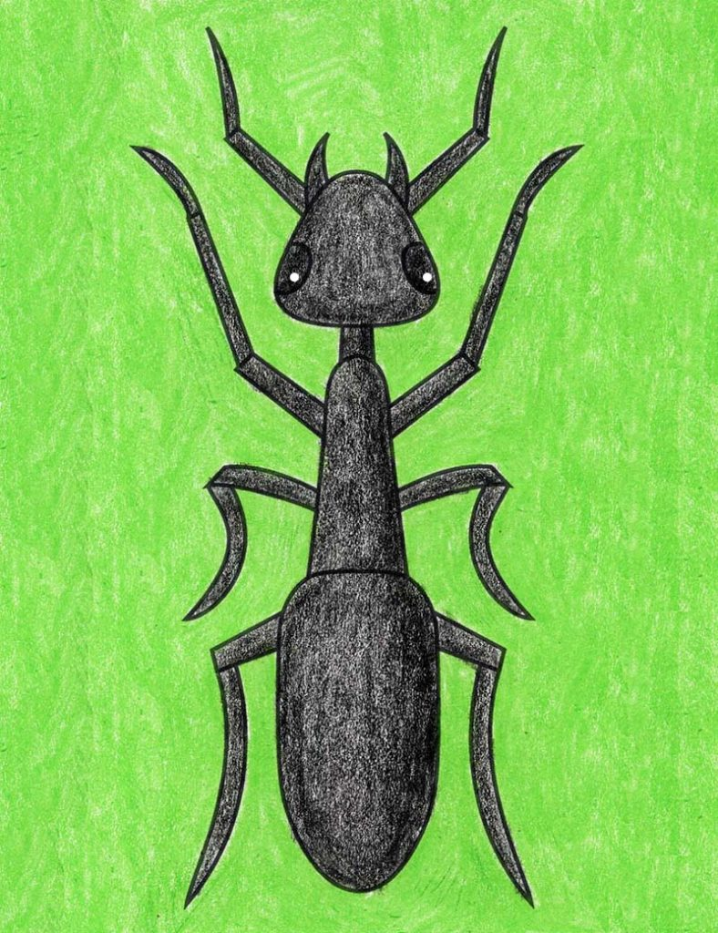 Learning how to draw an Ant gets easy when you start with a step by step tutorial. There's no better way to learn all the names of the and body parts.