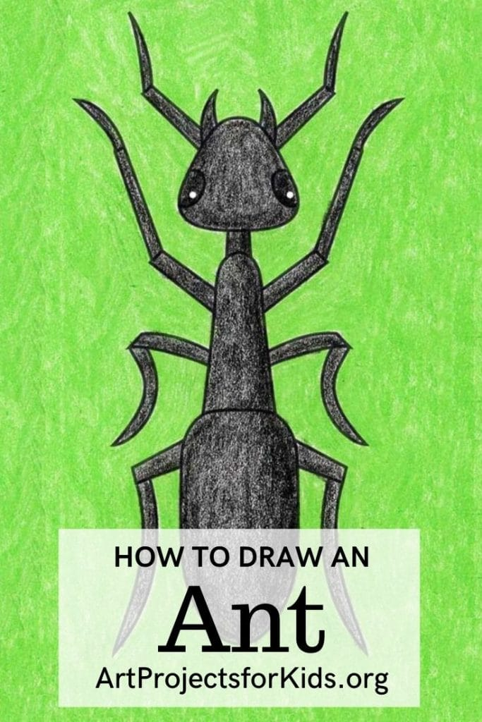 How to Draw an Ant for Pinterest – Activity Craft Holidays, Kids, Tips