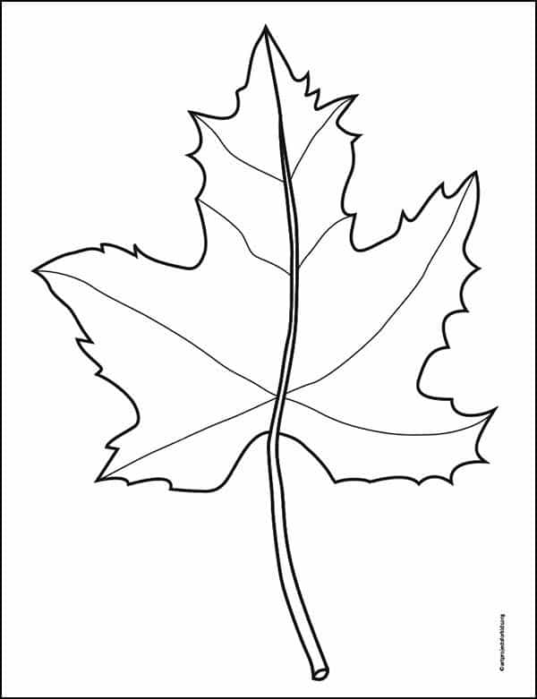 Line Art Maple Leaf Coloring Page – Activity Craft Holidays, Kids, Tips