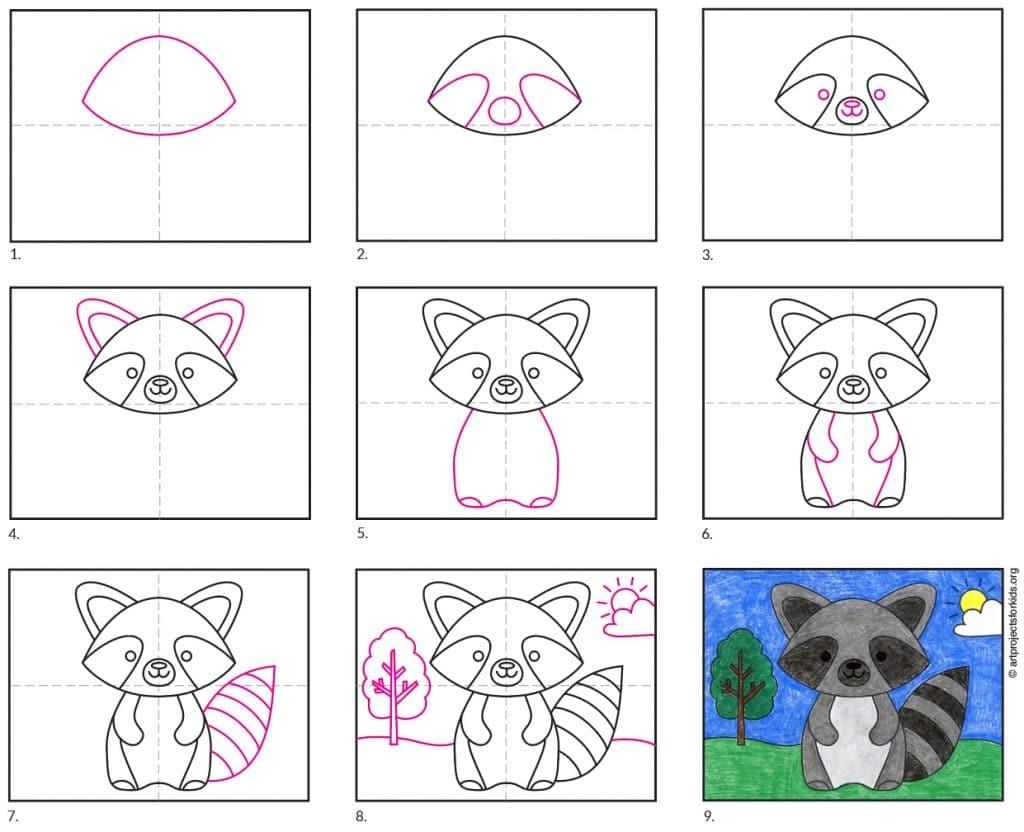 Raccoon Diagram – Activity Craft Holidays, Kids, Tips